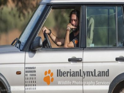 Iberian Lynx Land Safaris