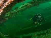 Discover amazing wrecks