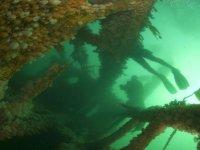 Divers at play