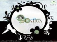 Caliga Activo Rocódromos