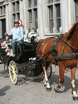 Carriage Riding