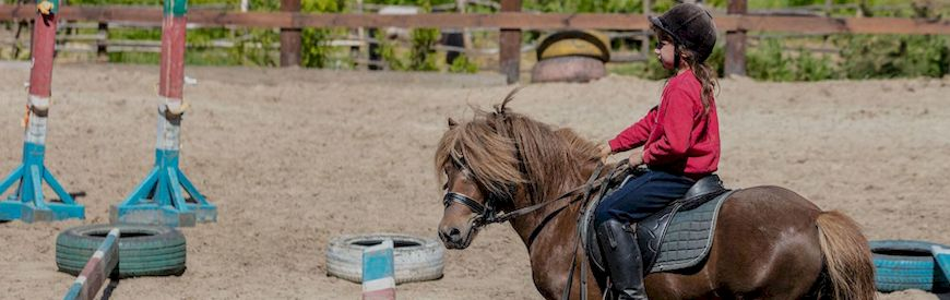 Offers of Horse Riding Lessons  Valencina De La Concepcion
