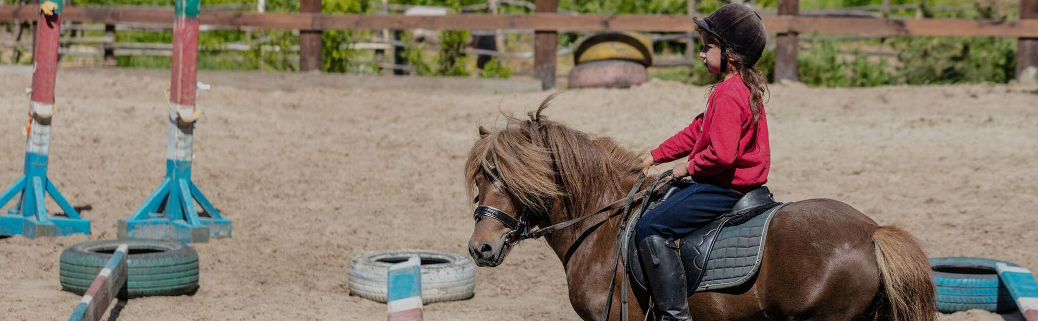 Horse Riding Lessons in Burgos