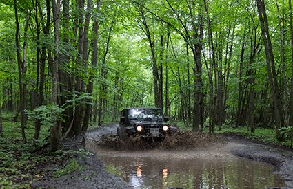 4x4 Tours in United Kingdom
