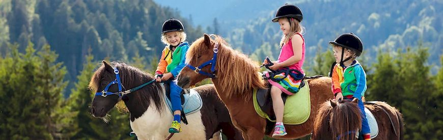 Offers of Horse Riding Camps  Serinya