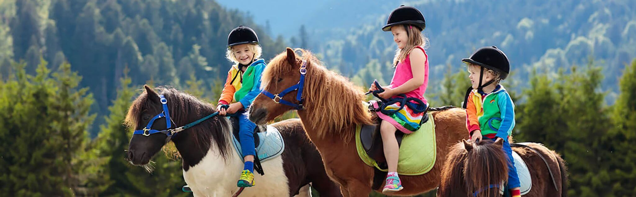 Horse Riding Camps in Espartinas