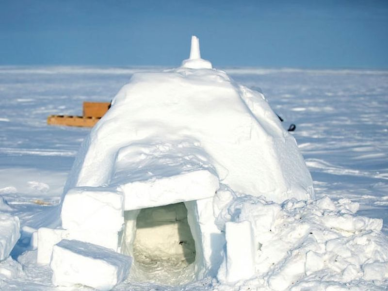 Discover how to build your own winter refuge