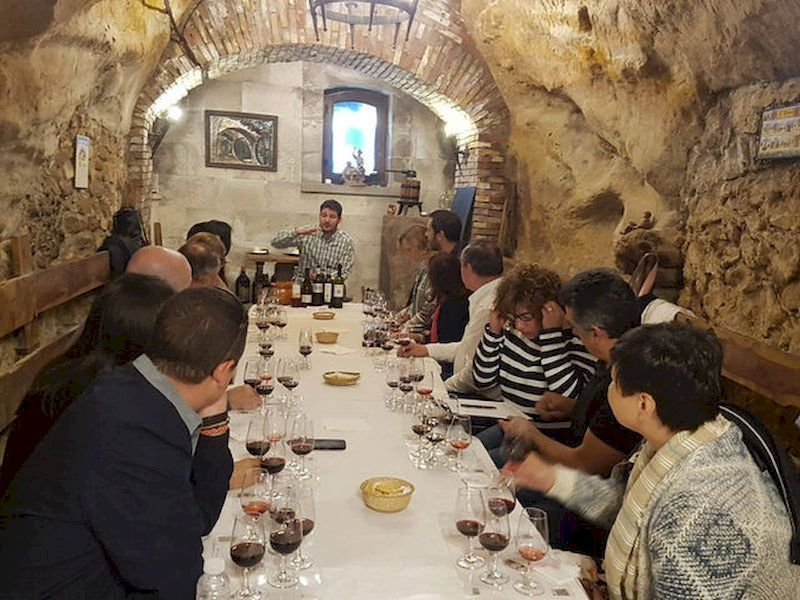 Participate in a wine tasting tour