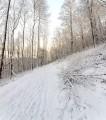 Hiking in Landkill Dale