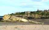 The beach in st andrews