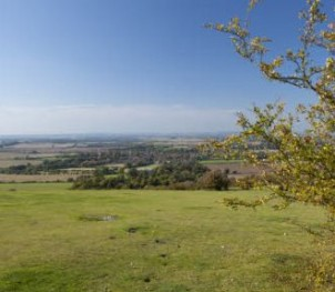 Looking out over Watlington hill