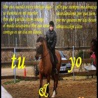 ¡caballos¡