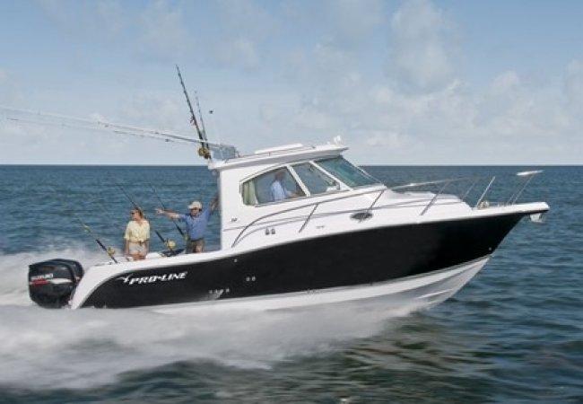 Fishing boat and cruiser